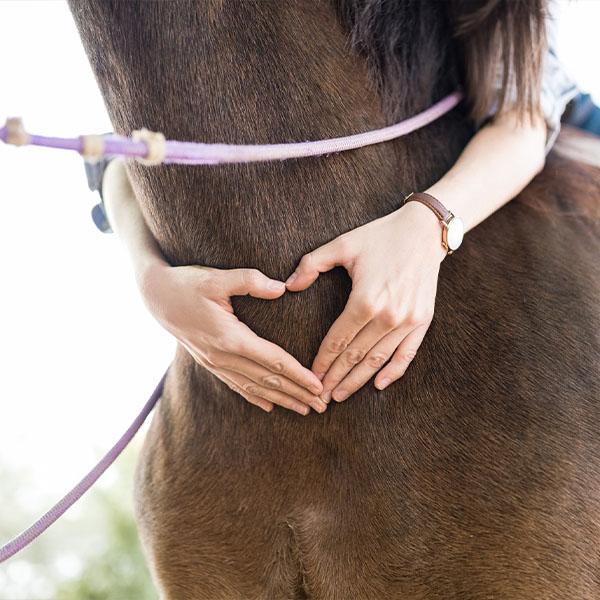 Kobieta obejmująca konia